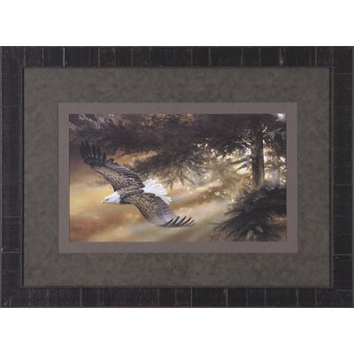 Art Effects Freedom Framed Artwork
