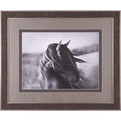 Art Effects Fierce Grace Framed Artwork