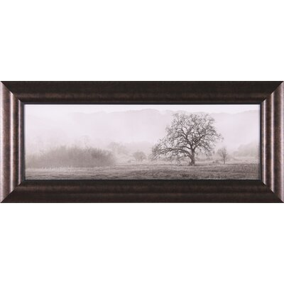 Art Effects Meadow Oak Tree Framed Artwork