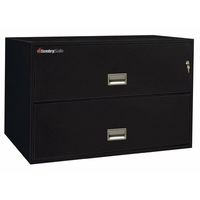 Sentry Safe 1 Hr Fireproof Key Lock 2 Drawer Letter File Safe