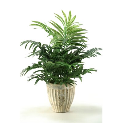 D & W Silks Parlor Palm in Ceramic Planter