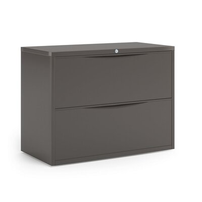 Mayline Group Two-Drawer Steel Lateral File