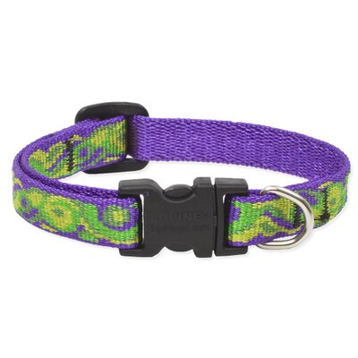 "Lupine Pet 0.5"" Adjustable Dog Collar"