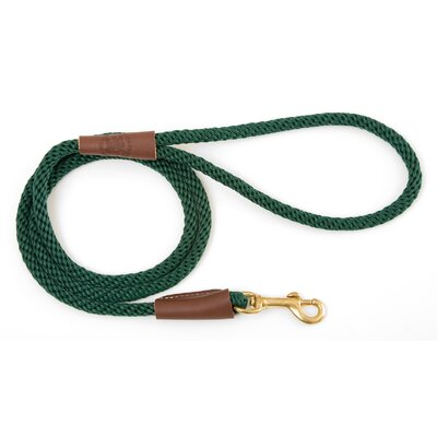 Small Snap Leash in Green
