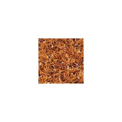 Hokku Designs Howzen Mix Orange Rug