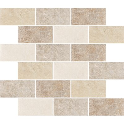 "Shaw Floors Padova 10"" x 12"" Subway Mosaic Accent Tile in Multi-Color"