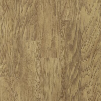 Shaw Floors Plaza 12mm Hickory Laminate in Havanna