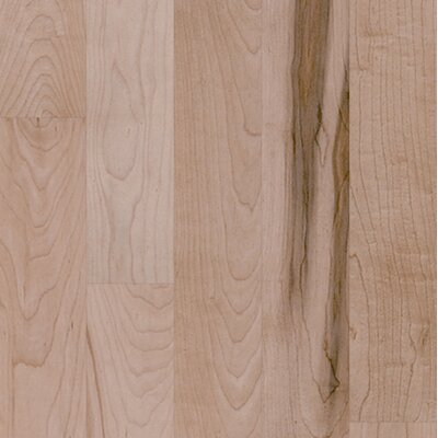 "Shaw Floors Nantucket 3-1/4"" Solid Maple Plank Flooring in Prospect Hill"