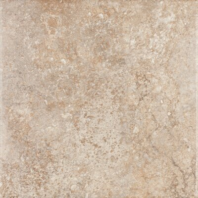 "Shaw Floors Padova 18"" x 18"" Floor Tile in Brown"