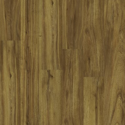 Shaw Floors Natural Impact II Plus 9.8mm Oak Laminate in Acorn Tan