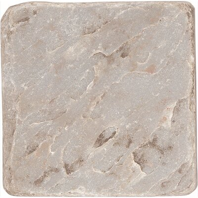 "Shaw Floors Slate Accent 4"" x 4"" Tile in Color 00100"