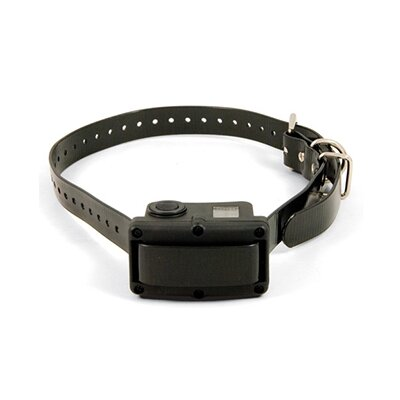 SportDOG Rechargeable Bark Control Dog Collar