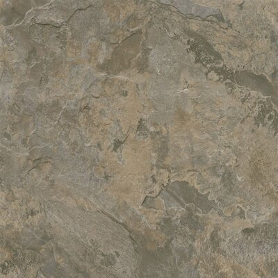 "Armstrong Alterna Mesa Stone 16"" x 16"" Vinyl Tile in Gray/Brown"