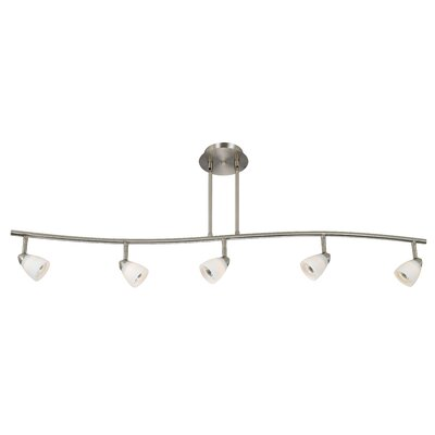 Serpentine Five Light Track Light with Brushed Steel Cones in Brushed Steel