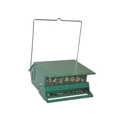 Birds Choice Squirrel Proof Feeder