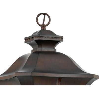 Quoizel Norfolk Extra Large Hanging Lantern in Terra Bronze