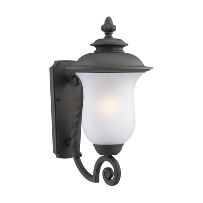 Thomas Lighting Carlisle 1 Light Wall Lantern