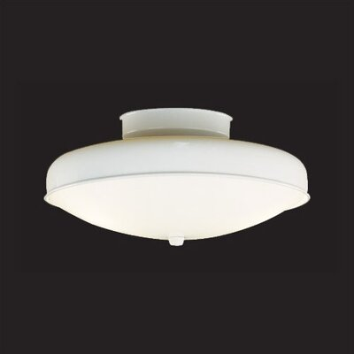 "Thomas Lighting 5.5"" 2 Light Semi Flush Mount"