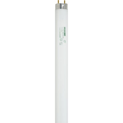 Sylvania T8 32 Watt Fluorescent Bulb with 3500K Color Temperature