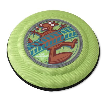Flying Discs Squirrel Dog Toy in Green