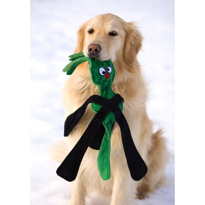 Doggles Sillypulls™ Dog Toy in Green
