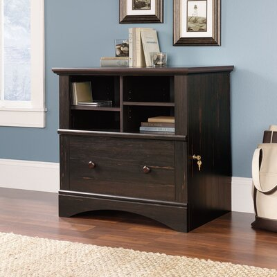 Sauder Harbor View Lateral File Cabinet in Distressed Antiqued Paint