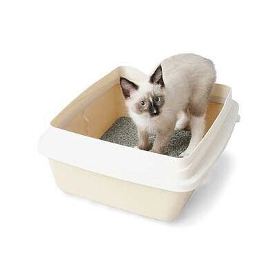 Petmate Large Cat Litter Pan with Rim