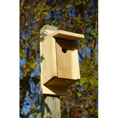 Heartwood Eastern Blue Bird Bird House