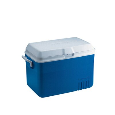 Rubbermaid Deluxe 48-Quart Hinged-Lid Ice Chest in Blue