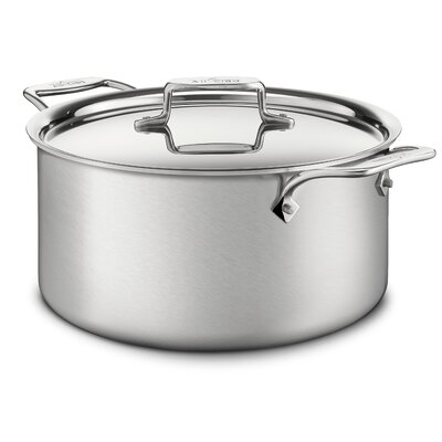 d5 Brushed Stainless Steel Stock Pot with Lid
