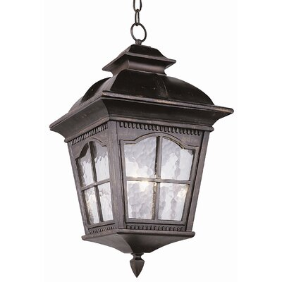 TransGlobe Lighting Outdoor Hanging Lantern
