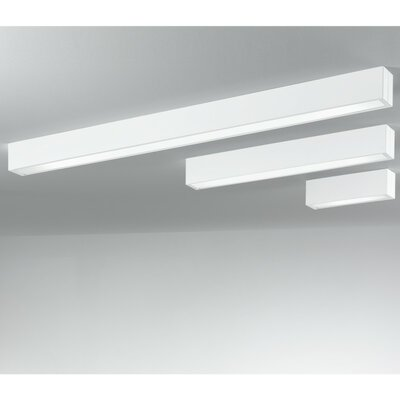 Zaneen Lighting Tub LED 3 Light Flush Mount