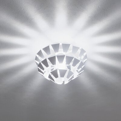 Zaneen Lighting Kalypso 1 Light Ceiling/Wall Sconce