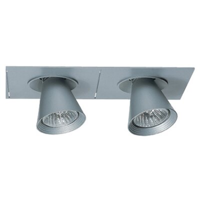 Zaneen Lighting Circe Two Light Flush Mount Spotlight in Metallic Gray