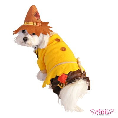 Scarecrow Dog Costume
