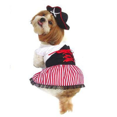 Lady Pirate Dog Costume