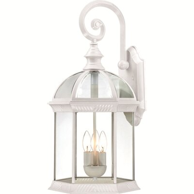 Nuvo Lighting Boxwood 3 Light Outdoor Wall Lantern