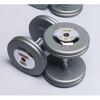 Troy Barbell 120 lbs Pro-Style Cast Dumbbells in Gray