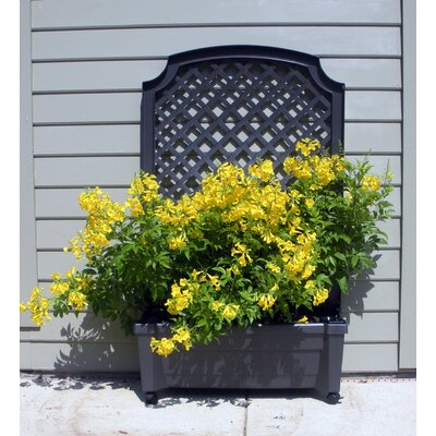 Exaco Calypso Square Planter with Trellis