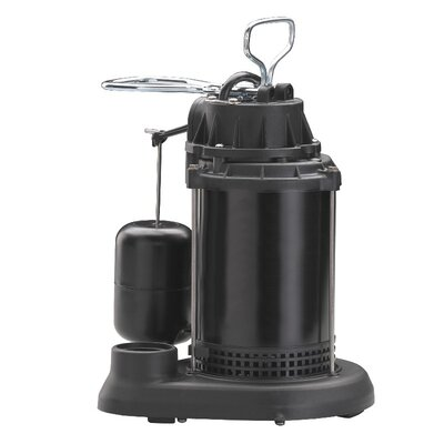 WAYNE 60 GPM Vertical Float Switch Thermoplastic Sump Pump with Epoxy Steel Motor Case