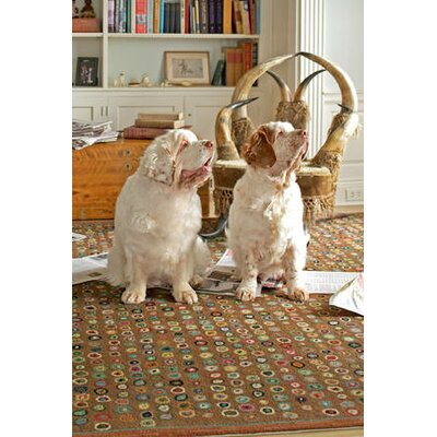 Dash and Albert Rugs Hooked Cats Paw Brown Micro Rug