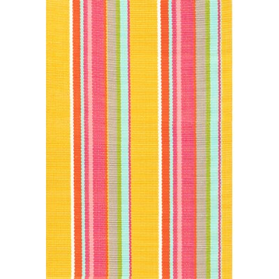 Dash and Albert Rugs Happy Stripe Rug
