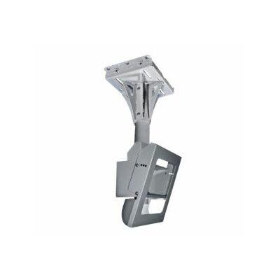 Peerless Indoor/Outdoor Concrete Ceiling Mount in Gray
