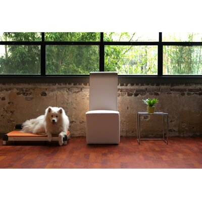 DoggySnooze SnoozeSleeper Dog Bed with Long Legs, an Inside Memory Foam Layer, and a Black Anodized Frame