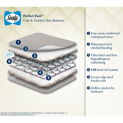 Sealy Crib Mattresses Perfect Rest Crib and Toddler Bed Mattress