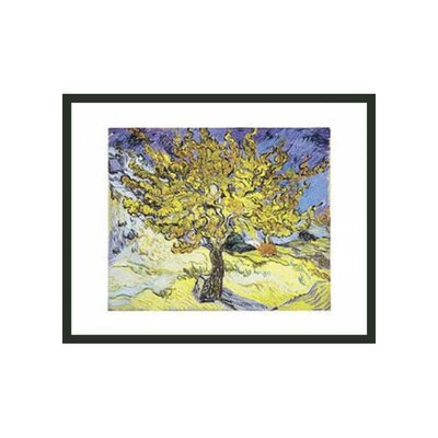 Mullberry Tree by Van Gogh Framed Print - 11