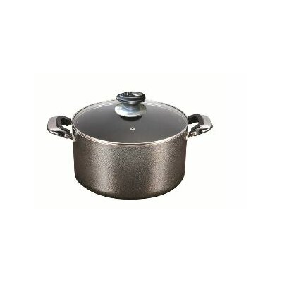 Danico Imperial 24-qt. Stock Pot with Lid