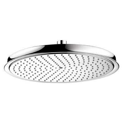 Hansgrohe Raindance C 300 Shower Head