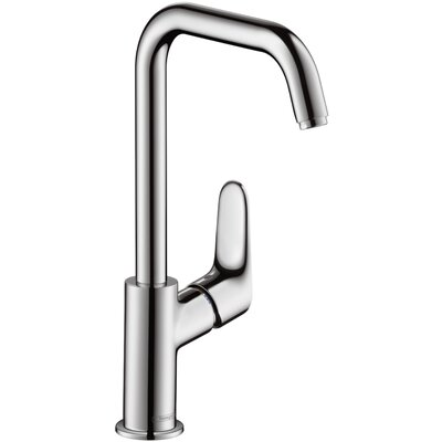 Hansgrohe Focus Single Handle Vessel Faucet