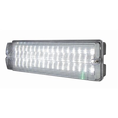 maintained emergency lighting system